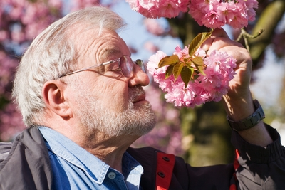 Spring Cleaning For Seniors Has Never Been So Easy