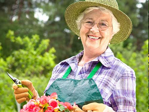 Spring Activities for Seniors in Chattanooga
