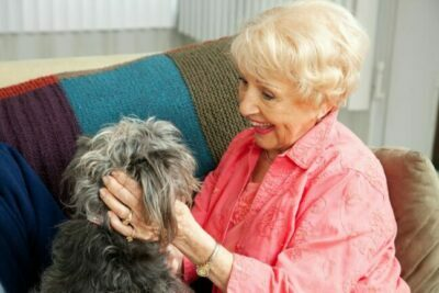 Pet Therapy for Seniors of Chattanooga